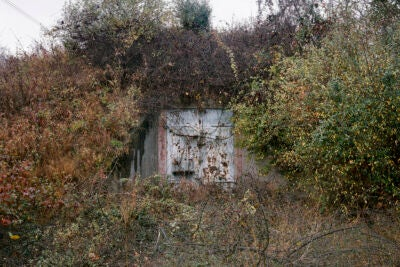 Iron door set in overgrown weeds.