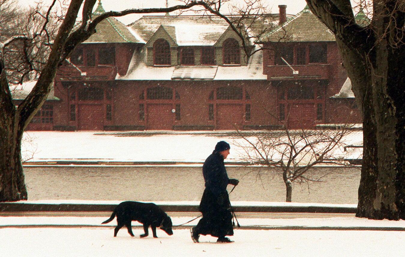 Walking a dog in snowy March.