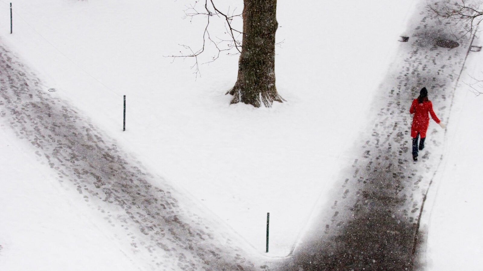 Yard with snow 2007.