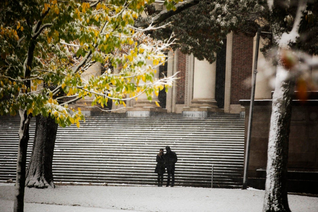 Steps with snow.