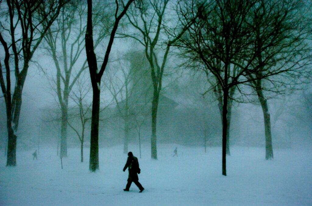 Stormy walk in snow.