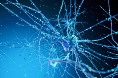 Conceptual illustration of neuron cells.
