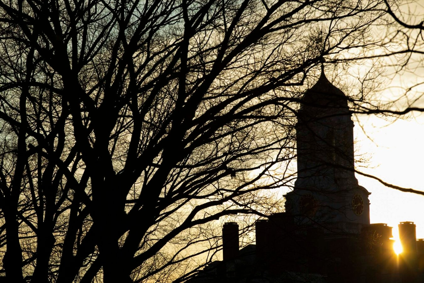 The Dunster House Tower is pictured at sunrise.