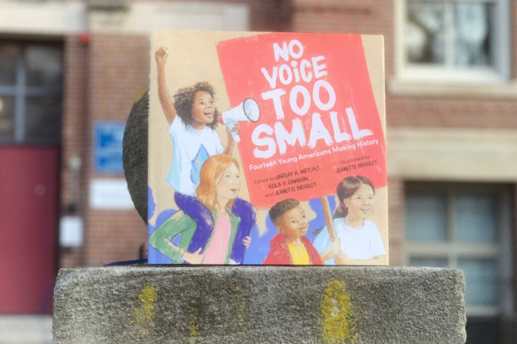 "Cover of ""No Voice Too Small."""