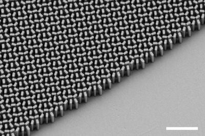 Scanning electron microscope micrograph of a metalens .