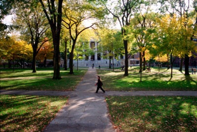Fall views of Widener Library at Harvard University. S