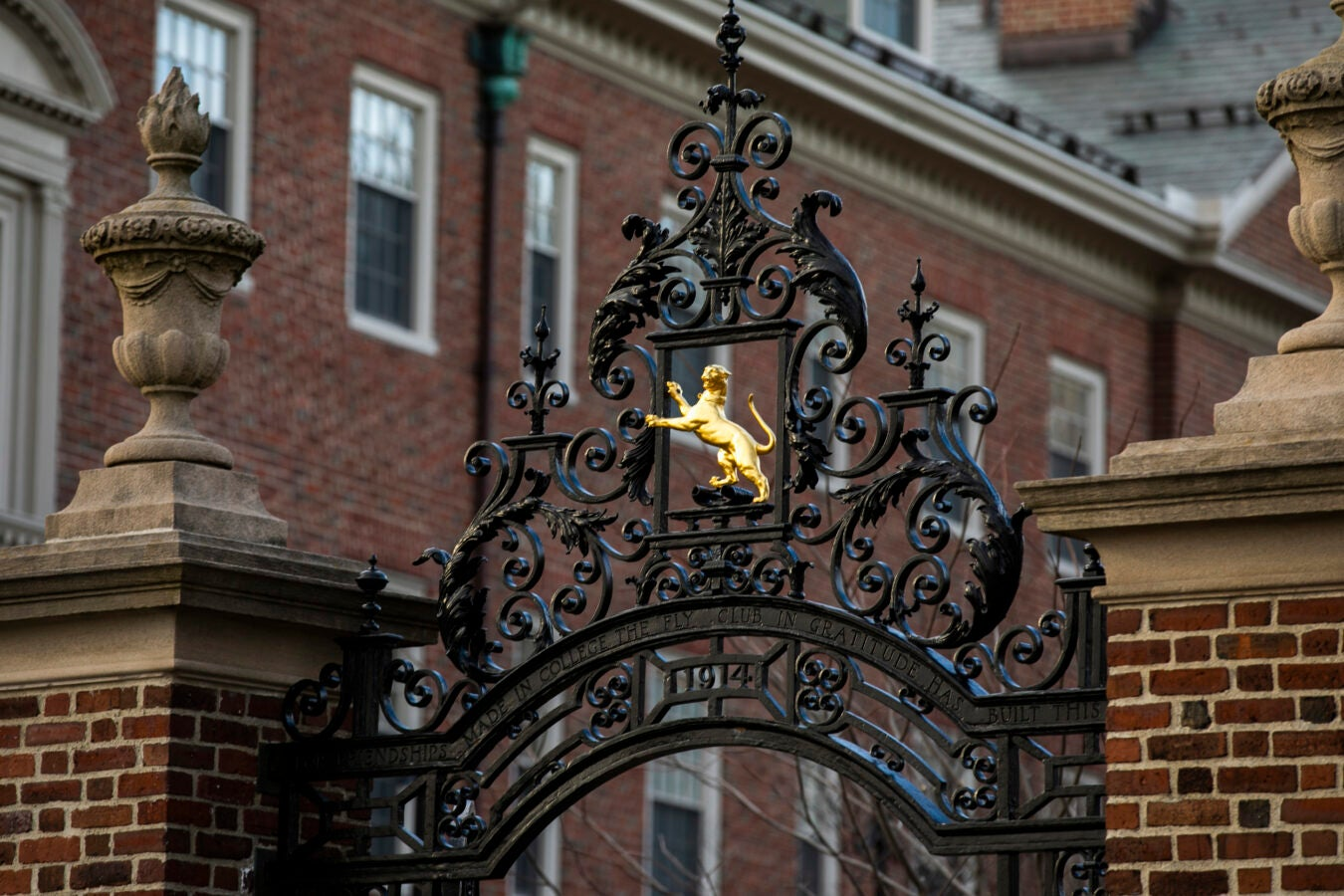 A golden panther embellishes the Fly Club Gate.