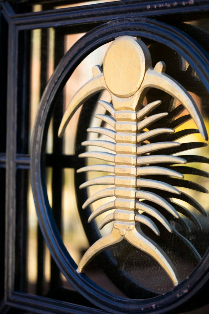 A golden trilobite decorates the door to the Bio Labs.