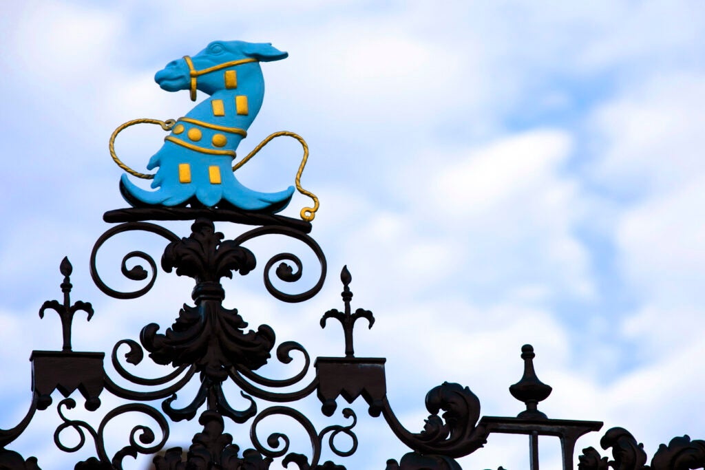 A blue horse decorates the gate surrounding Dunster House.