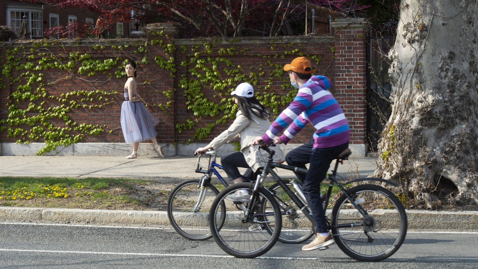 Two cyclists pass an M.I.T. student dancer posing for photos for a friend along Mem. Drive.