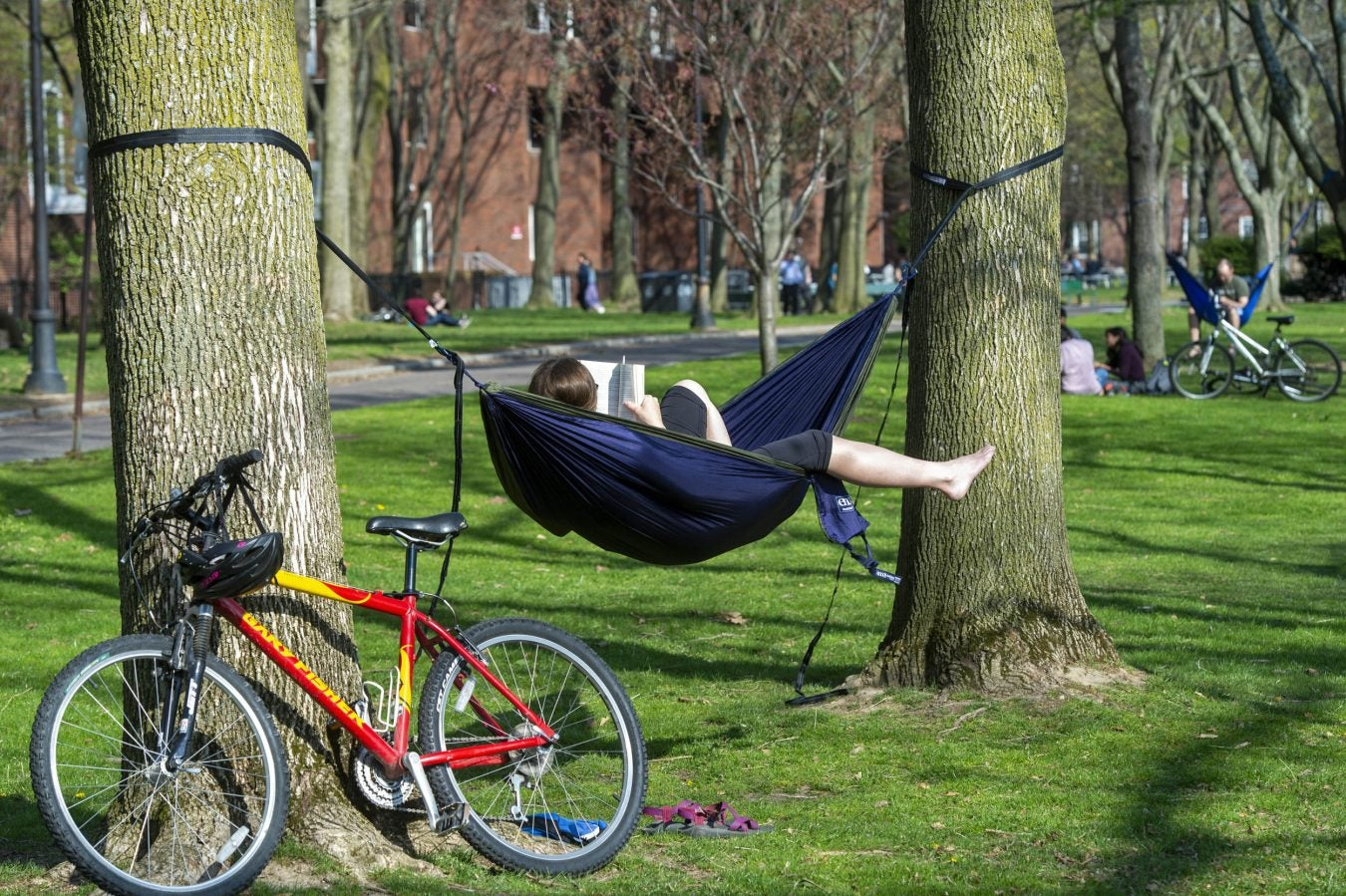 Melissa Moore relaxes in her hammock on the lawn next to Memorial Drive.