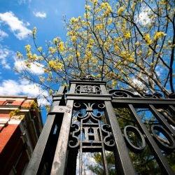 Gate along Quincy Street.