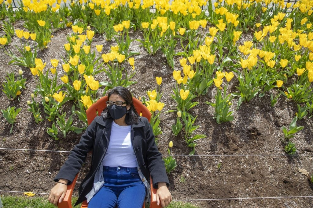 Marisa Sumathipala, '22 relaxes near a bed of daffodils at Leverett House.