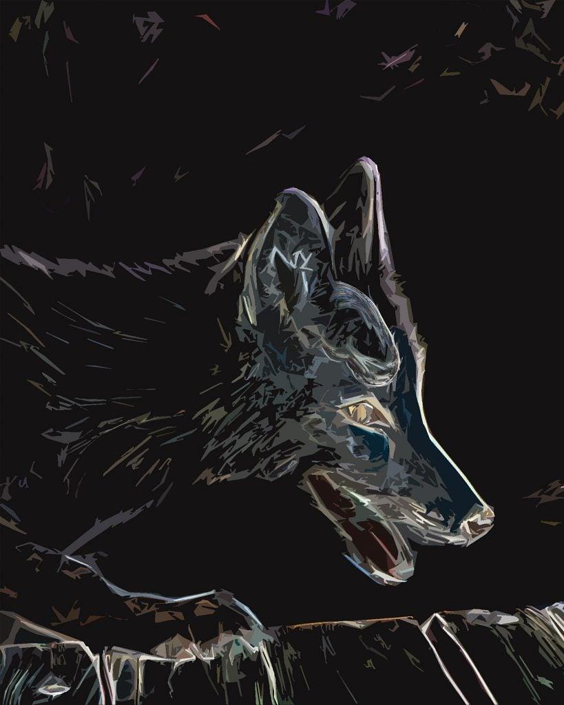 Fox illustration.