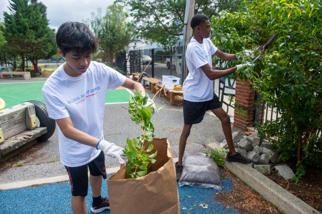 Students gardening.