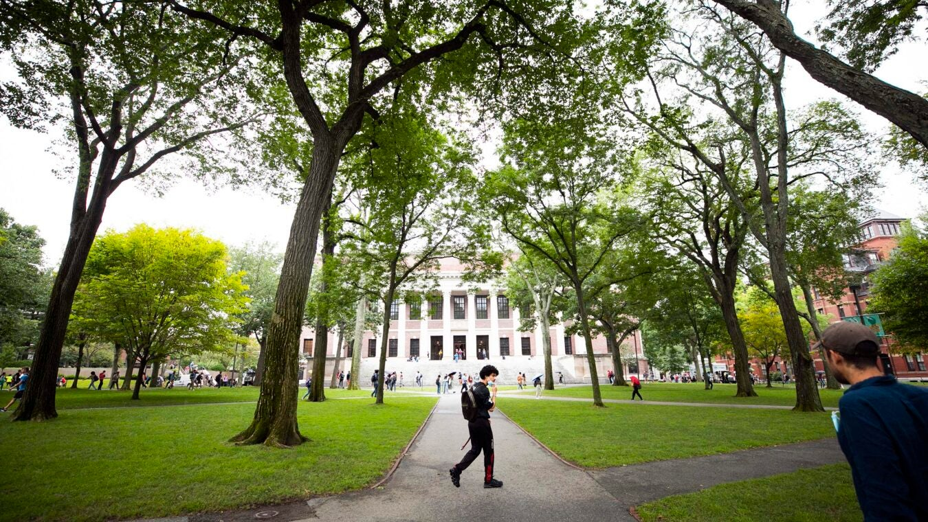 A student walks past Widener Library.