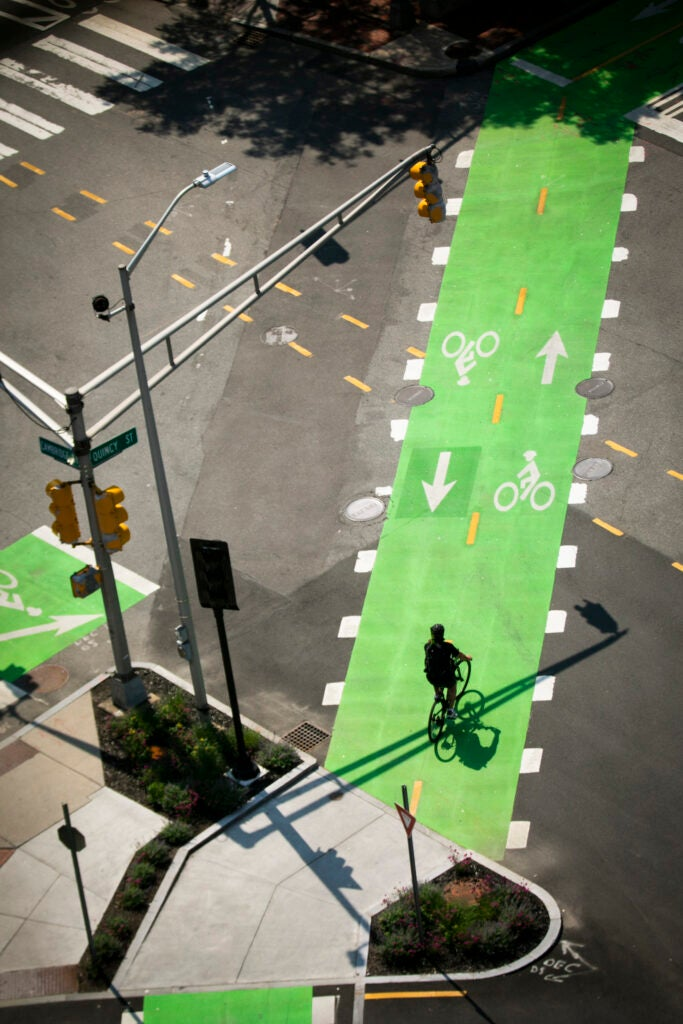 A bicyclist passes over the bike lane at the intersection of Quincy and Cambridge Streets.