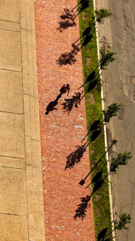 A person walks past a row of tree shadows on Kirkland Street.