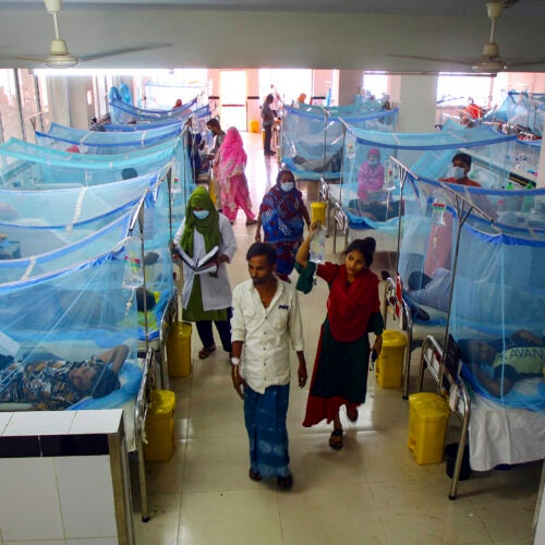 Patients lie under mosquito nets in Dengue ward in Bangladesh.
